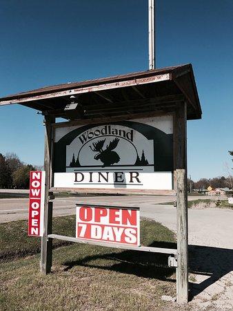 Gladwin, MI: Woodland diner