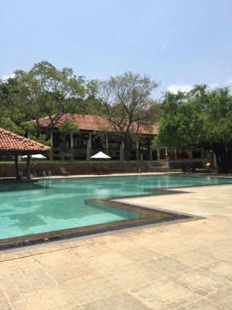 Amaya Lake: Pool and bar