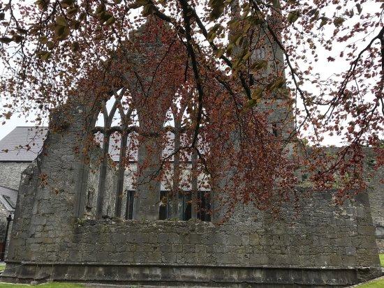 Ennis, İrlanda: photo2.jpg