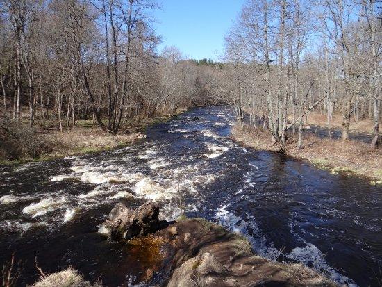 Harju County, Estland: Rzeka poniżej wodospadu Jagala