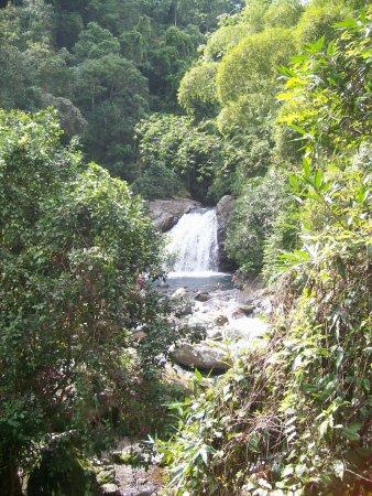Blue Mountain Bicycle Tour Ocho Rios Jamaica Top Tips
