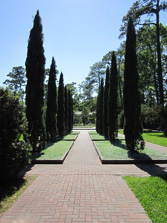 Mercer Arboretum Botanic Gardens Humble All You Need To Know Before You Go With Photos