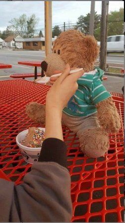 South Glens Falls, NY: My daughter and her Teddy enjoying ice cream from Mr. Bill's.