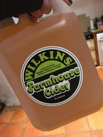 Wedmore, UK: Wilkins Cider Farm