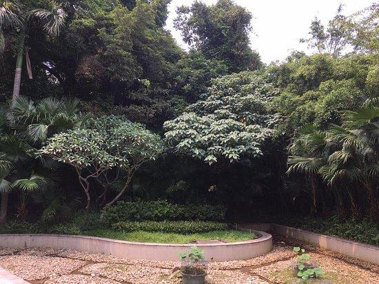 Mong Ha Fort: Un excelente lugar