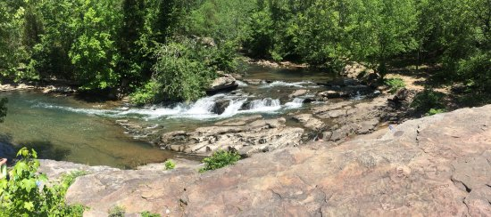 Turkey Creek Nature Preserve: Very relaxing walk. You have a great chance to observe nature.