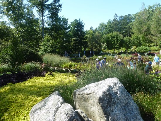 Coastal Maine Botanical Garden Picture Of Coastal Maine Botanical Gardens Boothbay Tripadvisor