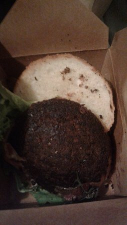 Blossoming Lotus Portland: BURNT CHEESEBURGERS AND VERY UNSATISFACTORY FOOD QUALITY
