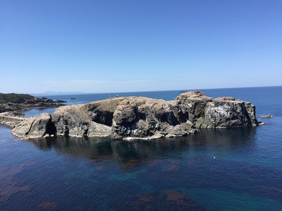 Hinomisaki Coast: 圧倒的な海の透明度