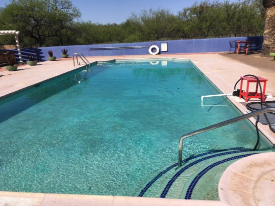 Sasabe, AZ: large rectangular pool has great potential