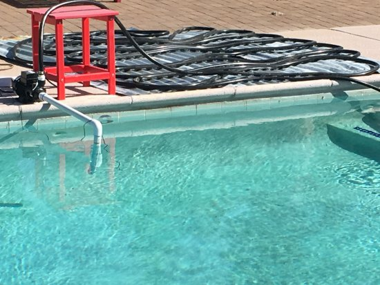 "Sasabe, AZ: Comical ""heating"" system and bee problem render this pool unswimmable for time-being"