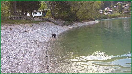 Pieve di Ledro, Italie : la spiaggia di Pur dedicata ai cani