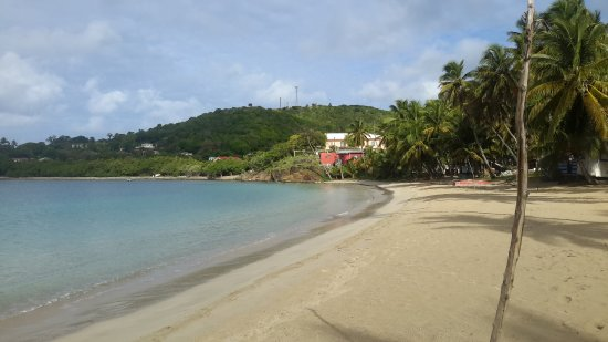 Carlisle Bay Antigua: Beach