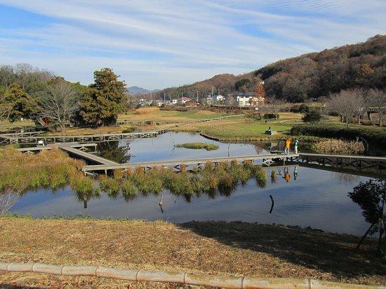 Nakai-machi, Japan: 厳島(ITSUKUSHIMA)湿生公園の全景です。