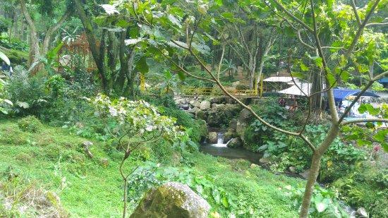 Ngawi, Ινδονησία: Kurawa MSB
