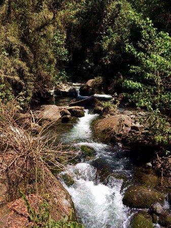Savegre Hotel, Natural Reserve & Spa: photo7.jpg