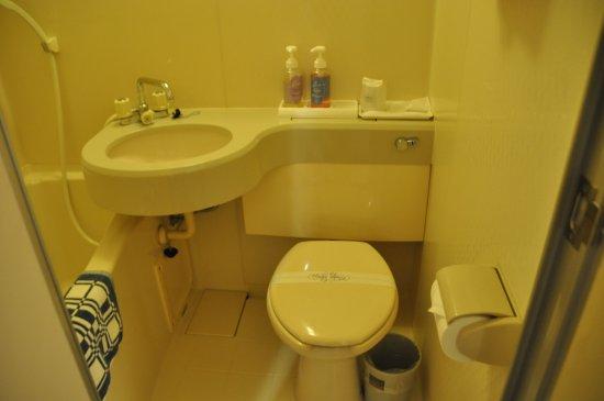Satosho-cho, Japan: トイレは洗浄機能はなし。ごく普通です