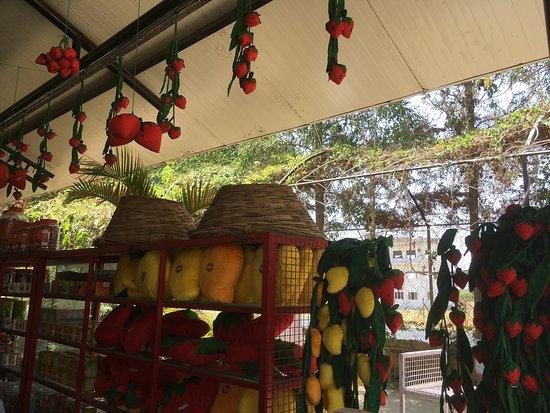 Mapro Garden Lonavala Quantum Computing