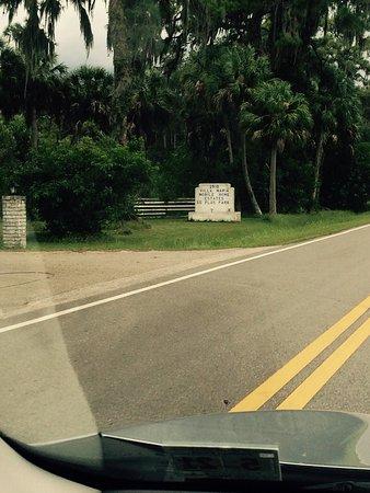 Ruskin, FL: photo1.jpg
