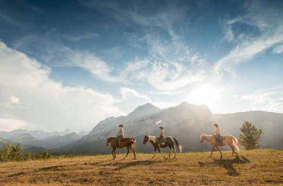 2-Hour Horseback Ride in Kananaskis