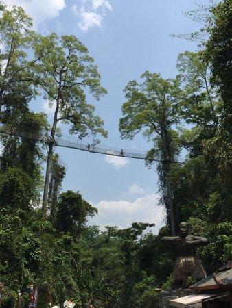 Ristoranti: Mengla County