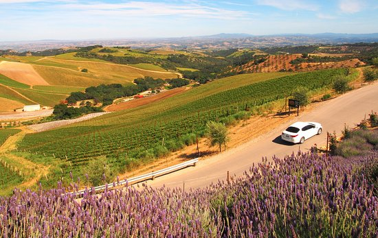 Paso Robles, Californien: Riding in style and comfort.