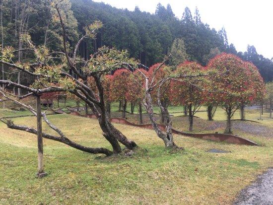 Muro Sanjo Park Art Forest: photo4.jpg