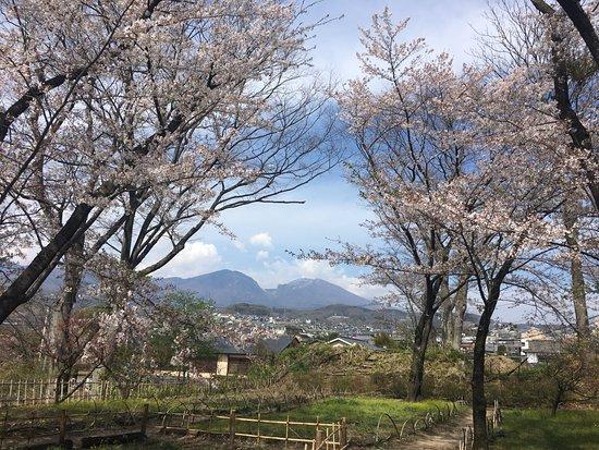 Kaikoen Garden