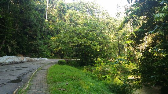 Ampang Recreational Forest