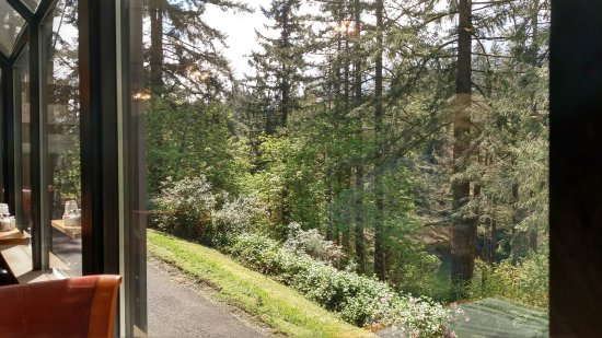 Estacada, OR: View from the Dining Room