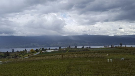 Summerland, Canada: View from Dirty Laundry Vineyard