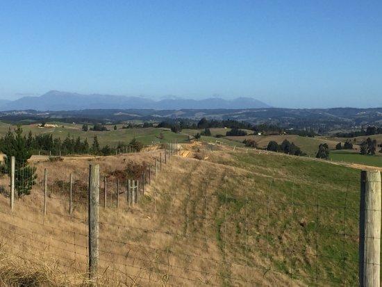 Mapua, Nouvelle-Zélande : photo2.jpg