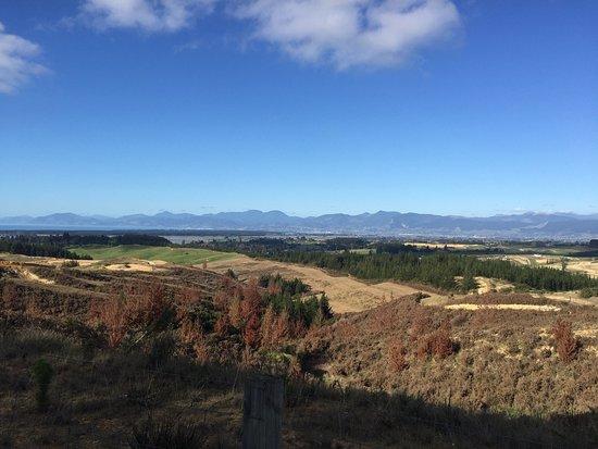 Mapua, Nouvelle-Zélande : photo5.jpg