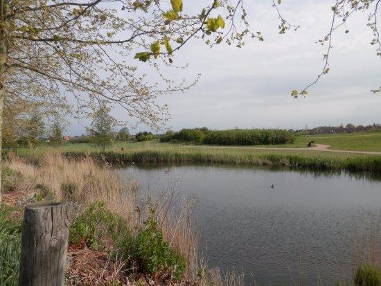 Nieuwveen, The Netherlands: View across golf course next door.