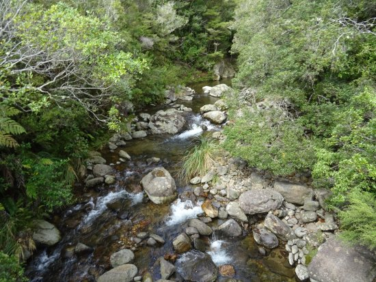 Whangamata, New Zealand: On the Wentworth falls track