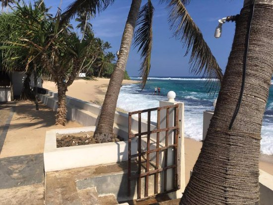 Talpe, Sri Lanka: View from the terrace