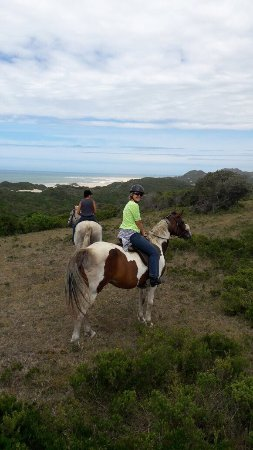 3 Sisters Horse Trails: photo0.jpg