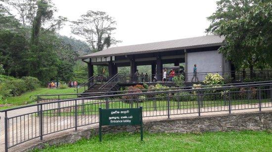 Avissawella, Sri Lanka: 20170416_111639_large.jpg