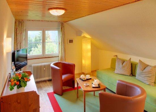 Am Feldberg Die Pension Kleine Suite Unter Dem Dach Wohnzimmer