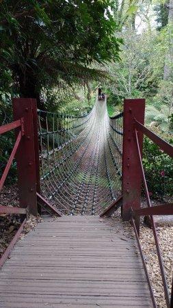 St Austell, UK: Rope bridge