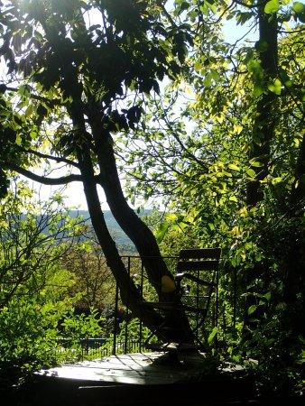 POGGIO SALVI Agriturismo Photo