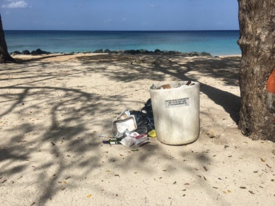 Holetown, Barbados: Folkestone Marine Park