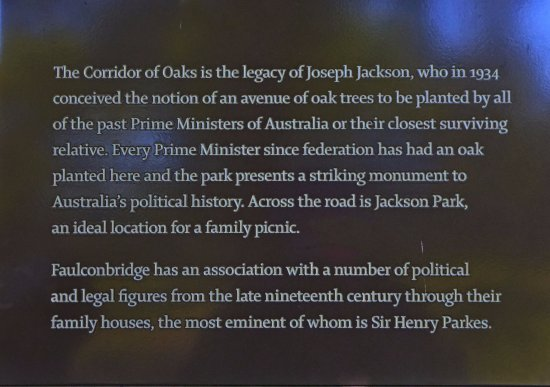 Introduction to the park - Picture of Corridor of Oaks