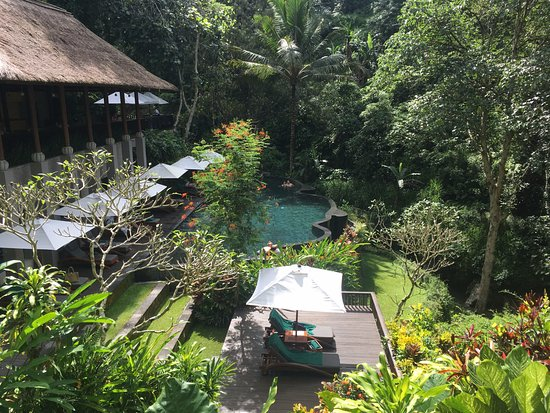 Maya Ubud Resort & Spa: Pool1