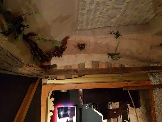 Massingy, Frankreich: Oenocentre Ampelopsis