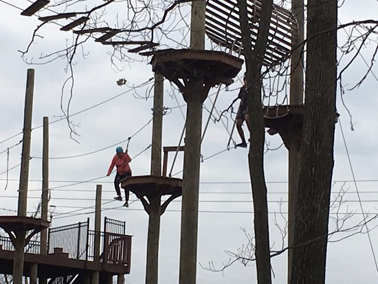 Essex County Treetop Adventure Course: Adult Course 2