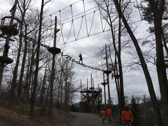 Essex County Treetop Adventure Course: Adult Course