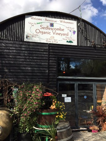 Sedlescombe Organic Vineyard: Shop & Bistro Entrance
