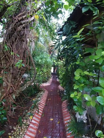 Gambar Pondok Bambu