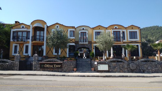 The Olive Tree Studios-billede
